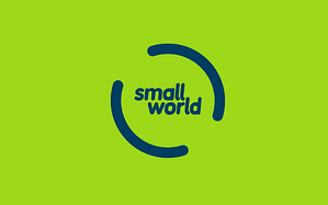 Small World Financial Services